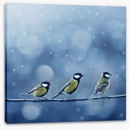 Titmouse birds in the snow Stretched Canvas 37426256