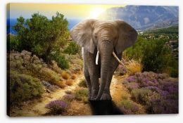 Elephant stroll Stretched Canvas 45496510