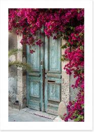 Old wooden door with bougainvillea