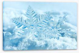 Snowflakes on snow