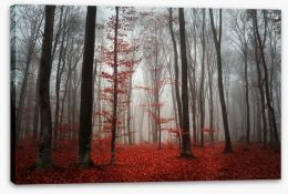 Autumn fog in the forest Stretched Canvas 50430017
