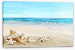 Beaches Stretched Canvas 51359291