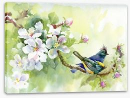 Birds of spring Stretched Canvas 53792086