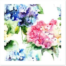 Hydrangea flowers Art Print 55717730
