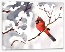 Red snow bird Stretched Canvas 57186402