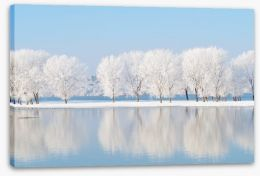 Winter reflections Stretched Canvas 58341096
