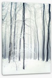 Winter forest Stretched Canvas 58438380