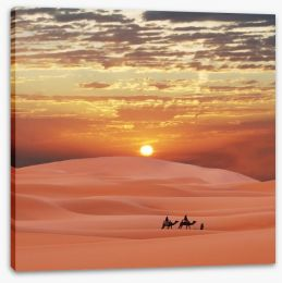 Africa Stretched Canvas 6099282