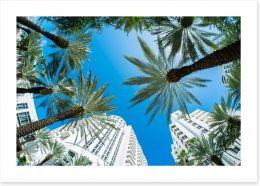 Miami Beach palms Art Print 61255644