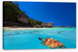 Tropical green turtle Stretched Canvas 61430210