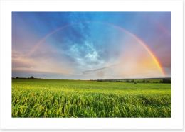 Spring meadow rainbow