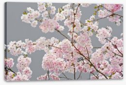 Flowers Stretched Canvas 63588637