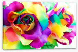 Rainbow roses Stretched Canvas 64237110