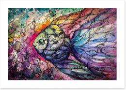Rainbow fishes