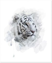White tiger splash