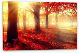 Autumn park sunlight Stretched Canvas 69511191