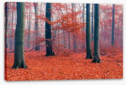 Misty Autumn forest Stretched Canvas 71244918