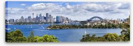 Sydney harbour panorama Stretched Canvas 74471213