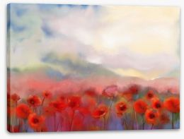 Poppies in the mist Stretched Canvas 76007480