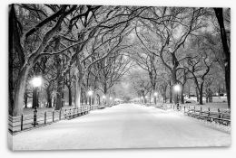 Snowy Central Park Stretched Canvas 76696889