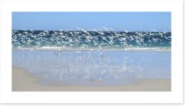 Coast at Coral Bay, Western Australia