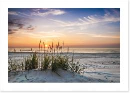 Soft evening calm Art Print 78836386