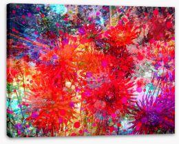Flower burst Stretched Canvas 84372058