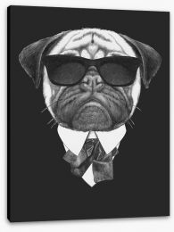 Suave pug Stretched Canvas 91590784