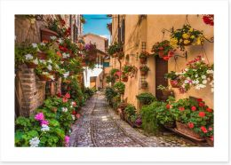 Floral alley in Umbria, Italy