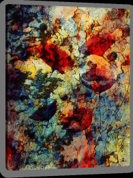 Sunburnt poppy Stretched Canvas 96349456