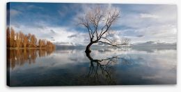 Lake Wanaka 97506824