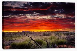 Red centre sunset Stretched Canvas CS0016