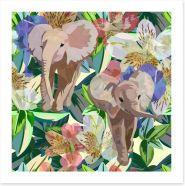 Rainforest elephants
