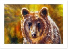 Mighty brown bear