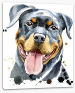 Animals Stretched Canvas 166724342