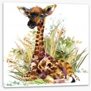 Animals Stretched Canvas 185495565