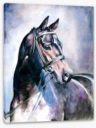Soulful mare Stretched Canvas 21596584