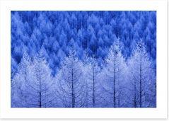 Winter Art Print 228236363