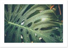 Leaves Art Print 255869860