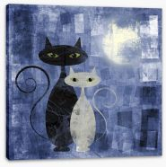 The moonlight cats Stretched Canvas 41519464