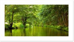 Vibrant forest river Art Print 44871103