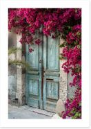 Old wooden door with bougainvillea