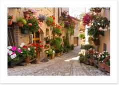 Italian alley with flowers