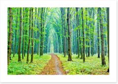 Vibrant Spring in the forest Art Print 53625026