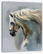 Canter Stretched Canvas 57953430