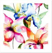 Lily and Iris Art Print 60562022
