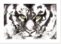 Eyes of a tiger Art Print 60851248