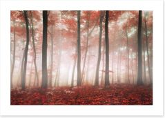 Red leaf forest