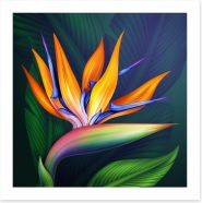 Bird of paradise Art Print 70028661