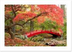 Red bridge in Autumn Art Print 72372777